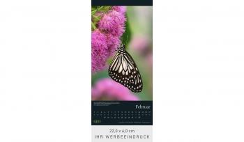 GEO: Faszination Natur 2022 (Rückwand)