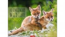 HEIMISCHE WILDTIERE 2022