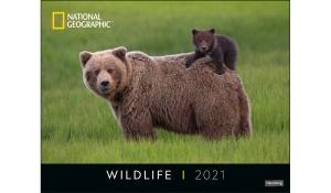 WILDLIFE POSTERKALENDER 2021