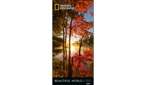 BEAUTIFUL WORLD VERTICAL 2021