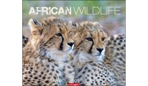 AFRICAN WILDLIFE 2021