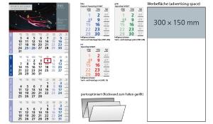 4-Monatskalender 2021 Logic 4