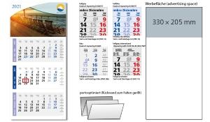 3-Monatskalender 2021 Medium Light 3
