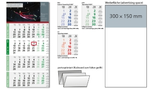 4-Monatskalender 2022 Logic 4