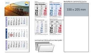 3-Monatskalender 2022 Medium Light 3