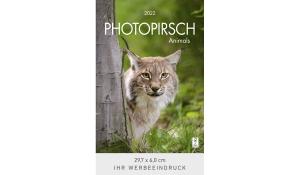 Photopirsch 2022 (Rückwand)