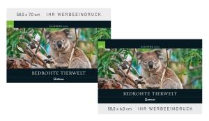 GEO: Bedrohte Tierwelt 2022